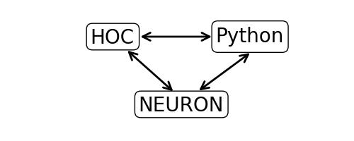 NEURON + Python Basics — NEURON + Python Tutorials 7 5